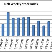 D20 Stock Index